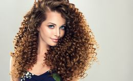 Young, brown haired woman with dense,elastic curls in a hairstyle. Gentle smile on the face of flawless young girl, vivid makeup and dense, curly hairstyle royalty free stock photography