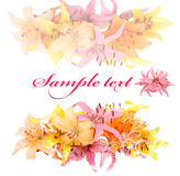 Gentle soft card with lily on a white background Royalty Free Stock Image