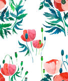 Gentle sophisticated gorgeous pattern of poppies and buds with green leaves watercolor. Hand sketch Royalty Free Stock Photos