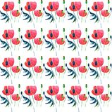 Gentle sophisticated gorgeous spring pattern of red poppies and buds with green leaves watercolor. Hand illustration Royalty Free Stock Photos