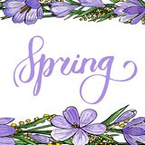Gentle spring banner royalty free illustration