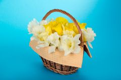 Gentle spring flowers in basket with napkin Stock Photo