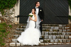 Gentle stylish couple on the background  green ivy wall, road, d Royalty Free Stock Photos