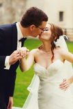 Gentle stylish couple is kissing on the background  green grass Royalty Free Stock Photo