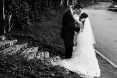 Gentle stylish couple is kissing on the background  ivy wall, ro Stock Photos