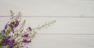 Gentle summer background for the decoration of cards. Wildflowers and wood Royalty Free Stock Photos
