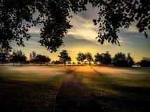 Gentle sunrise over park Stock Photos