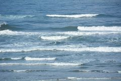 A gentle surf off of the Oregon Coast. This is a gentle surf off of the coast of Oregon Royalty Free Stock Photography
