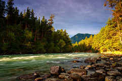 Gentle touch of sun on the river Royalty Free Stock Photo