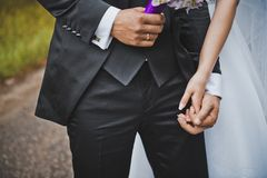 Gentle touches of hands of the newly-married couple 2047. Stock Photo