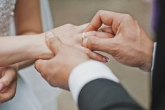 Gentle touches of hands of the newly-married couple 2051. Stock Image