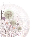 Gentle vector floral background. With decorative flowers Royalty Free Stock Image