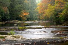 A gentle view. A stream in the Smoky Mountains Royalty Free Stock Photos