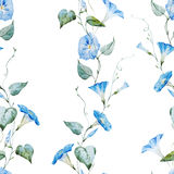 Gentle watercolor floral pattern Royalty Free Stock Photos