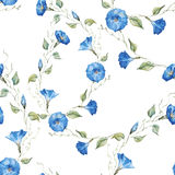 Gentle watercolor floral pattern Royalty Free Stock Image