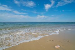 Free Gentle Waves On An Empty Sandy Beach With A Calm Ocean Royalty Free Stock Photography - 161788097