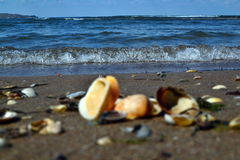 Gentle waves of the sea of Azov. Summer shore of the sea of Azov. Beautiful planet Earth Stock Photo