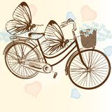 Gentle wedding background with bicycle and butterflies. Cute vector invitation with bicycle and flowers Stock Photos