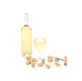 Gentle white wine composition. Royalty Free Stock Images