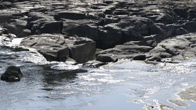 Gentle wide river stock video footage