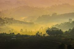 Gentle yellow light and light mist over the hills in country side with traditional houses and the tropical nature of Uganda royalty free stock images