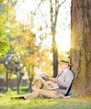 Gentleman on a grass reading a newspaper in a park. Senior gentleman seated on a grass reading a newspaper in a park at autumn, shot with a tilt and shift lens Stock Photography