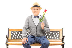 Gentleman holding a red rose seated on bench Stock Images