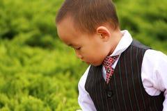 gentleman little Arkivfoto
