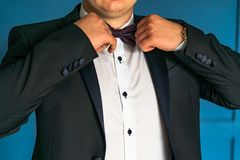 A gentleman in luxurious in a black jacket and white shirt corrects bow tie by his hands royalty free stock images