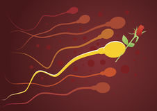 Gentleman sperm. Stock Photos