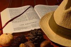Gentlemans hatt i studien Arkivfoton