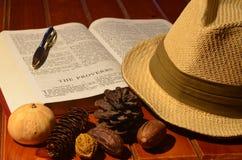 Gentlemans kapelusz w nauce Zdjęcia Stock