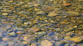 Gently flowing river stock footage