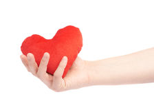 Gently holding plush red heart isolated Stock Photography