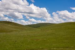 Condon Hills. Gently rolling grass covered hills, south of Condon Oregon Royalty Free Stock Photo