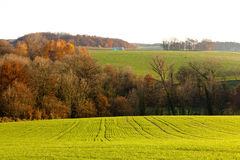 Gently rolling hills farmland of Germany Europe Stock Photography