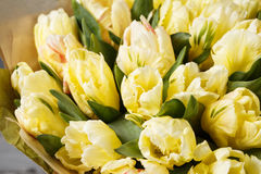 Gently yellow pastel colors tulips in vase on wooden table. Gray wall Stock Images