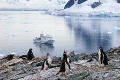 Gentoo-Pinguine vor einem antarktischen Kreuzschiff, antarktische Halbinsel Stockbild