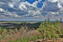 Gentry Outlook, Apache Sitgreaves National Forest, Arizona, United States. Scenic landscape view of Gentry Outlook, located in Apache Sitgreaves National Forest Stock Photography
