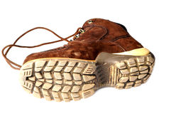 Gents footwear Stock Photography