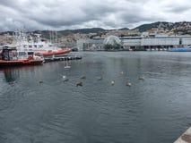 Genua-Hafen Lizenzfreies Stockfoto
