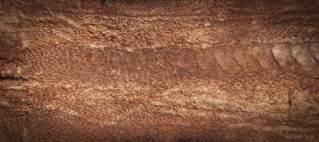 Genuine Brown Leather Royalty Free Stock Image