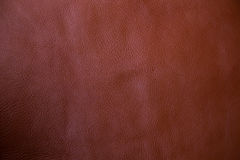 Genuine brown textured cow leather background Royalty Free Stock Photo