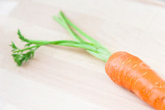 Genuine carrot Royalty Free Stock Photography