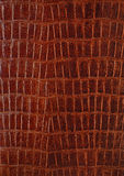 Genuine crocodile leather. Vertical background Royalty Free Stock Photo