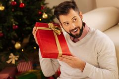 Happy man listening to the sound in gift box. Genuine curiosity. Cheerful young man sitting near a Christmas tree, shaking a gift box in his hands and listening Royalty Free Stock Photo