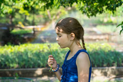 Genuine girl holding a fragile fuzzy dandelion Royalty Free Stock Photography
