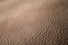 Genuine leather background Stock Image