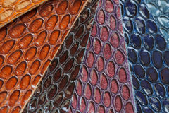 Genuine leather color samples, exotic texture of reptile. For background use. Lots of place for writing text around it Royalty Free Stock Image