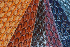 Genuine leather, color samples with Texture under the skin exotic reptile for fashion industry Royalty Free Stock Images